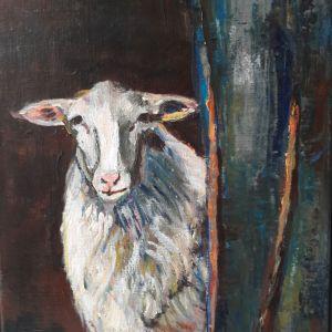 Schaap, Acryl op doek 30 x 40 cm