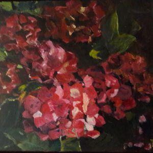 Hortensia's, Acryl op doek 49 x 50 cm